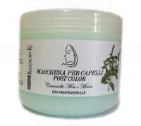 MASCHERA CAPELLI POST COLOR PROFESSIONAL 500 ML